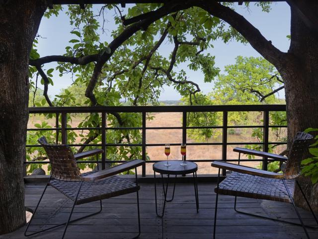 Pench Tree Lodge