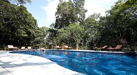 Jungle Lodge