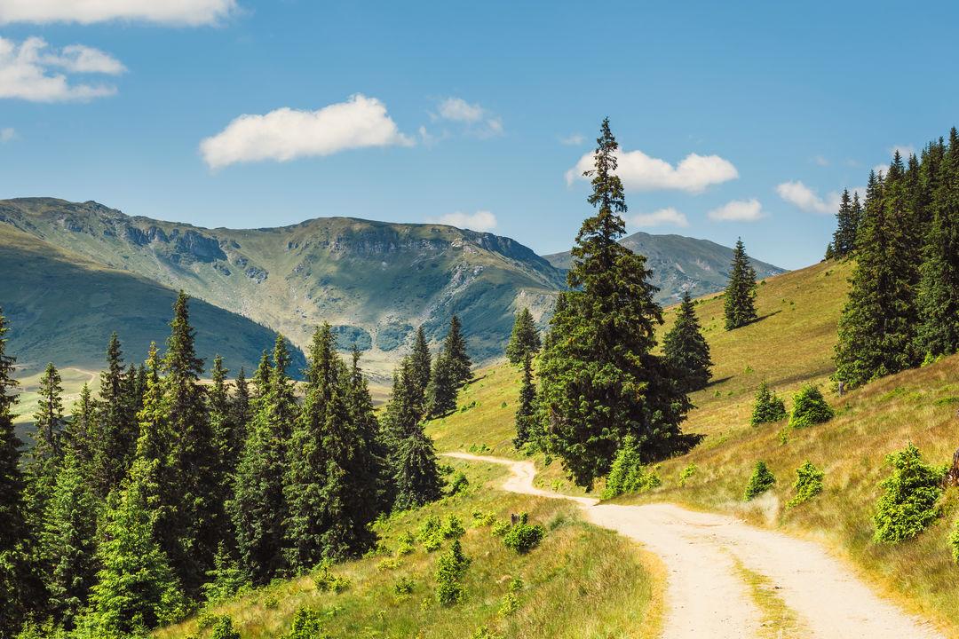 Rodna Mountains