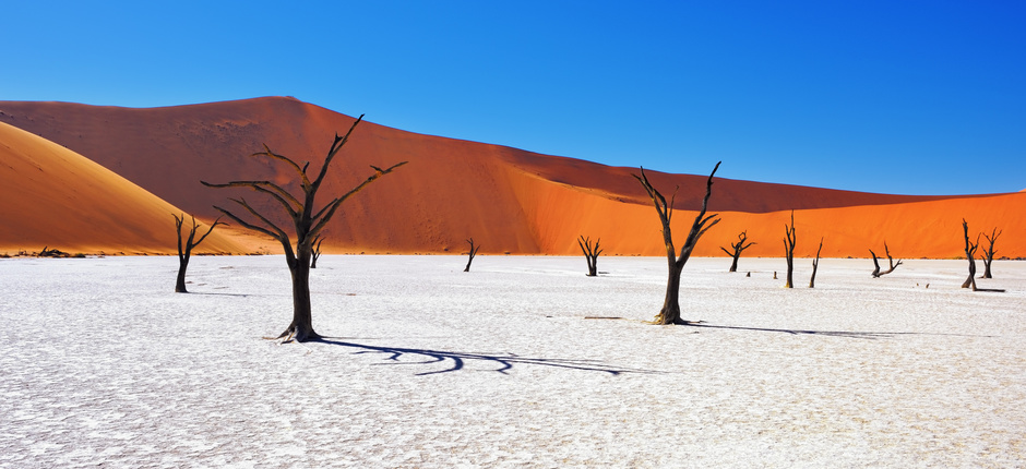 Namibia: Sands of Time