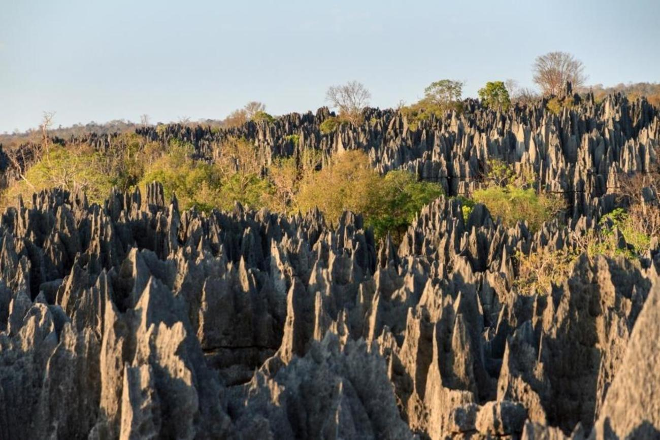 Things to do in Madagascar - Explore Tsingy National Park