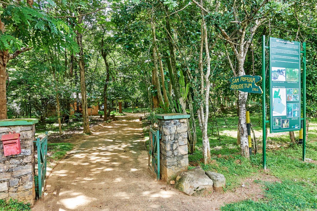 Visit Sam Popham Arboretum