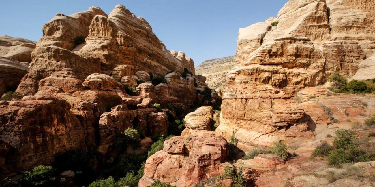 Explore Dana Nature Reserve