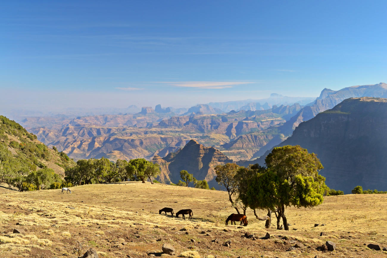 Explore The Simien Mountains in Ethiopia