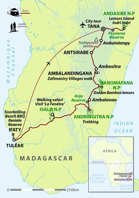 Classic Madagascar