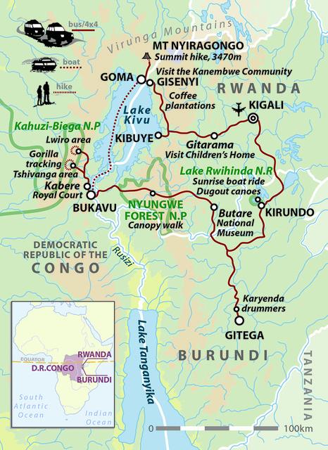 Gorillas in Africa's Midst
